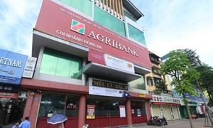 Đại biểu quốc hội tán thành bổ sung vốn điều lệ cho Agribank