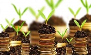 Phấn đấu đến năm 2025, 60% ngân hàng tiếp cận được nguồn vốn xanh