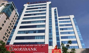 Agribank sẵn sàng tiến hành cổ phần hóa theo chỉ đạo của Chính phủ