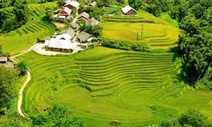 Du lịch Lào Cai tìm hướng phục hồi tăng trưởng và phát triển bền vững