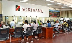 Agribank tiếp tục mở rộng cho vay lĩnh vực nông nghiệp, nông thôn