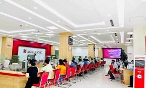 Agribank giảm thêm lãi suất cho vay hỗ trợ khách hàng tại 19 tỉnh, thành phía Nam