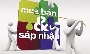 Hoạt động M&A doanh nghiệp có vốn nhà nước thực hiện theo phương thức nào?