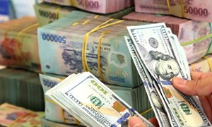 Kho bạc Nhà nước công bố tỷ giá hạch toán ngoại tệ tháng 10/2021