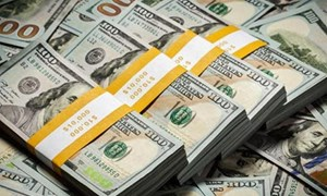 Kho bạc Nhà nước mua thành công 150 triệu USD từ 30 ngân hàng thương mại