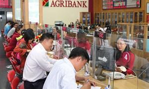 Agribank – TOP 3 doanh nghiệp nộp thuế lớn nhất Việt Nam năm 2019