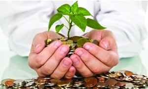 Agribank hướng tín dụng vào lĩnh vực năng lượng xanh, sạch