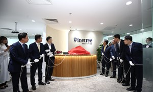 Thương hiệu Pinetree Việt Nam ra mắt tại Hà Nội