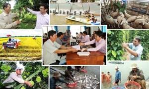 Phát triển kinh tế tập thể trong bối cảnh mới