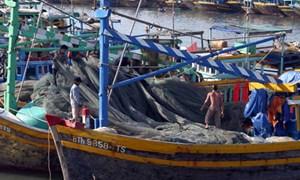 Ngân hàng: Tiếp sức hỗ trợ ngư dân vươn khơi, bám biển