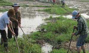 Chú trọng chống hạn cho sản xuất nông nghiệp