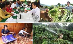 Tây Nguyên: Nguồn vốn tín dụng ưu đãi đã tiếp sức cho người nông dân