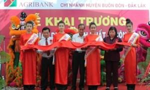 Khai trương Phòng Giao dịch Thành Nhất Agribank chi nhánh huyện Buôn Đôn, Đắk Lắk