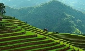 Hợp tác, xúc tiến du lịch Việt Nam - Hà Lan
