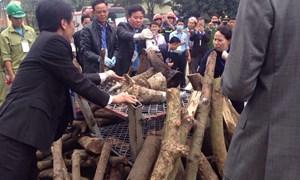 Lần đầu tiên tiêu hủy hơn 2 tấn ngà voi và sừng tê giác