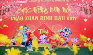 Chào xuân Đinh Dậu – Tết Việt 2017