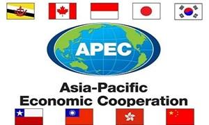 Thảo luận về triển vọng hợp tác của diễn đàn APEC