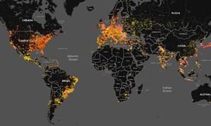 Trí tuệ nhân tạo và tội phạm mạng: Xấu tốt song hành