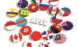 Hiện thực hóa khát vọng của APEC về tăng trưởng bao trùm