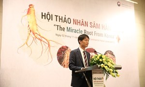Việt Nam là thị trường tiêu thụ nhân sâm lớn thứ 5 của Hàn Quốc?