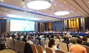 Hội nghị lần thứ ba các quan chức cao cấp APEC (SOM 3) chính thức khai mạc