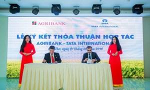 Agribank hỗ trợ tài chính đưa máy móc nông nghiệp công nghệ cao vào sản xuất
