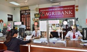 ALCII phá sản, không ảnh hưởng đến hoạt động của Agribank