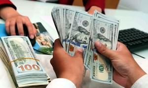 Kho bạc Nhà nước công bố tỷ giá hạch toán ngoại tệ tháng 01/2021