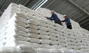 Tổng cục Dự trữ Nhà nước sẽ mua 200.000 tấn gạo và 80.000 tấn thóc nhập kho năm 2019