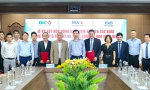 BIC ký kết hợp đồng bảo hiểm nguyên tắc với TMT