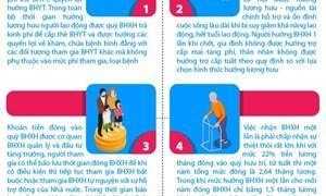 [Infographics] Lý do để người lao động cân nhắc khi hưởng bảo hiểm xã hội một lần