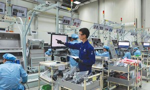 Hỗ trợ doanh nghiệp nâng cao năng suất và chất lượng sản phẩm
