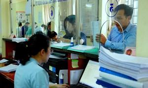 6 tháng, Hải quan TP. Hà Nội thu hút 146 doanh nghiệp mới đến làm thủ tục