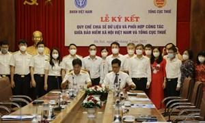 BHXH Việt Nam hợp tác với Tổng cục Thuế về quản lý thu BHXH, BHYT và quản lý thuế