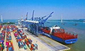 Tác động của đại dịch Covid-19 tới hệ thống cảng biển Việt Nam