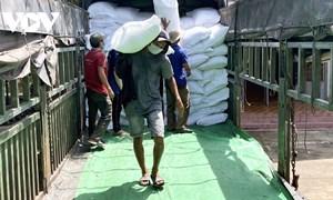 Xuất cấp 1.847,265 tấn gạo dự trữ quốc gia hỗ trợ người dân bị ảnh hưởng dịch COVID-19