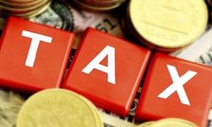 Thực tiễn triển khai Luật Quản lý thuế năm 2019 và những vấn đề đặt ra