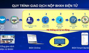Nhiều tiện ích khi đóng, nộp BHXH, BHYT trên Cổng giao dịch điện tử của BHXH Việt Nam