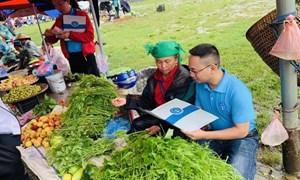 Phát triển bền vững người tham gia BHXH tự nguyện