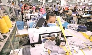91% doanh nghiệp Việt Nam lạc quan về khả năng thành công