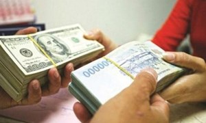 Kho bạc Nhà nước công bố tỷ giá hạch toán ngoại tệ tháng 12/2020