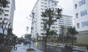 Nhà thu nhập thấp hứa hẹn chỉ 8 triệu đồng/m2