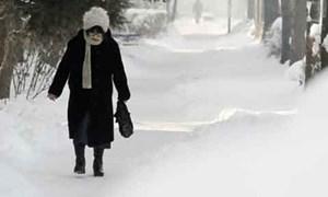 Anh có thể thiệt hại gần 800 triệu USD vì tuyết lớn