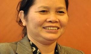 Năm 2013 Việt Nam sẽ cắt giảm 214 dòng thuế nhập khẩu