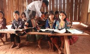 Tổ chức phi chính phủ và mô hình giảm nghèo tại Việt Nam