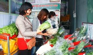 VietGap mang lại nhiều lợi ích cho cộng đồng ở Quảng Nam