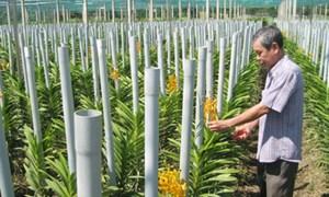 Huyện Củ Chi đạt chuẩn nông thôn mới năm 2015