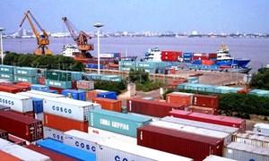 Kim ngạch xuất khẩu, nhập khẩu hàng hóa giảm mạnh