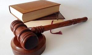 Khung pháp luật và chính sách liên quan đến chính thức hóa kinh doanh theo Luật Doanh nghiệp