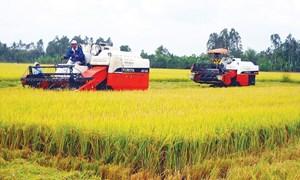 Thu hút vốn đầu tư nước ngoài vào nông nghiệp trong bối cảnh Cách mạng công nghiệp 4.0